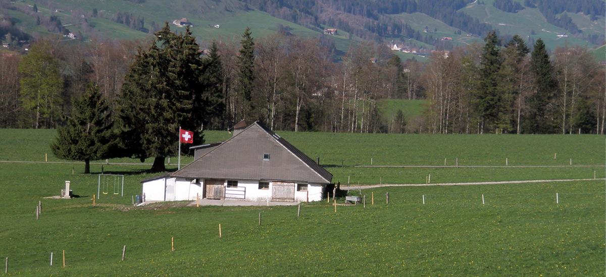 Buvette de montagne en Gruyère - AU Creux du Feu en été